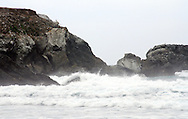 Crashing waves froth white against the rocky shore of Big Sur, California on an overcast day