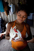 Young indigenous Brazilian gril with her pet white rabbit. A third of Altamira in the state of Para, Brazil will be flooded to make way for the Belo Monte dam, nearly all the people affected are the poorest in society or indigenous communities that will have nowhere to go if they were made homeless, and the Government payoff for their properties is low therefore making it difficult to find new accomodation. At present, the Arara land is protected from development, sale or new residents as it has been their ancestral land for hundreds of years, this is now one of the key areas under threat