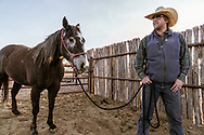 Cowboy and horse reflects on a long day of rounding up cattle after a damaged fence allowed their escape. Image created by Arkansas commercial photographer, Alex Kent