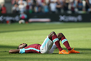 Michail Antonio of West Ham United lays on the pitch in despair after pulling his hamstring. Premier league match, West Ham Utd v Swansea city at the London Stadium, Queen Elizabeth Olympic Park in London on Saturday 8th April 2017.<br /> pic by Steffan Bowen, Andrew Orchard sports photography.