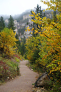 A walk down Spearfish Canyon in Autumn on a foggy day.