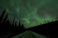 The Aurora Borealis shimmers above a road in the Alaskan interior.