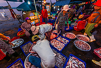 Fish market at sunrise, Cam Ha; Hoi An, Vietnam.