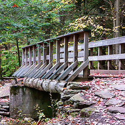 Foot bridge along the Falls Trail in Ricketts Glen State Park, Benton, PA, USA