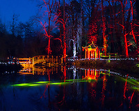 Electric Woods presents the Spirit of the Orient light show at Robin Hill Country Park on the Isle of Wight