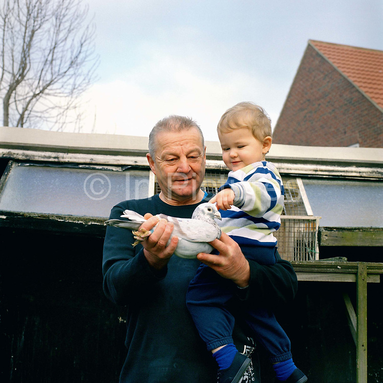 Mr Hutchinson and his grandson look at a racing pigeon outside his loft in his garden in Whitby, North Yorkshire, UK