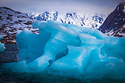 "Blue iceberg in Kongsfjord, Ny Alesund, Svalbard This mage can be licensed via Millennium Images. Contact me for more details, or email mail@milim.com For prints, contact me, or click ""add to cart"" to some standard print options."
