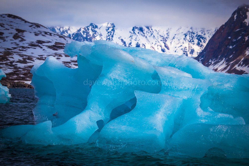 """Blue iceberg in Kongsfjord, Ny Alesund, Svalbard This mage can be licensed via Millennium Images. Contact me for more details, or email mail@milim.com For prints, contact me, or click """"add to cart"""" to some standard print options."""