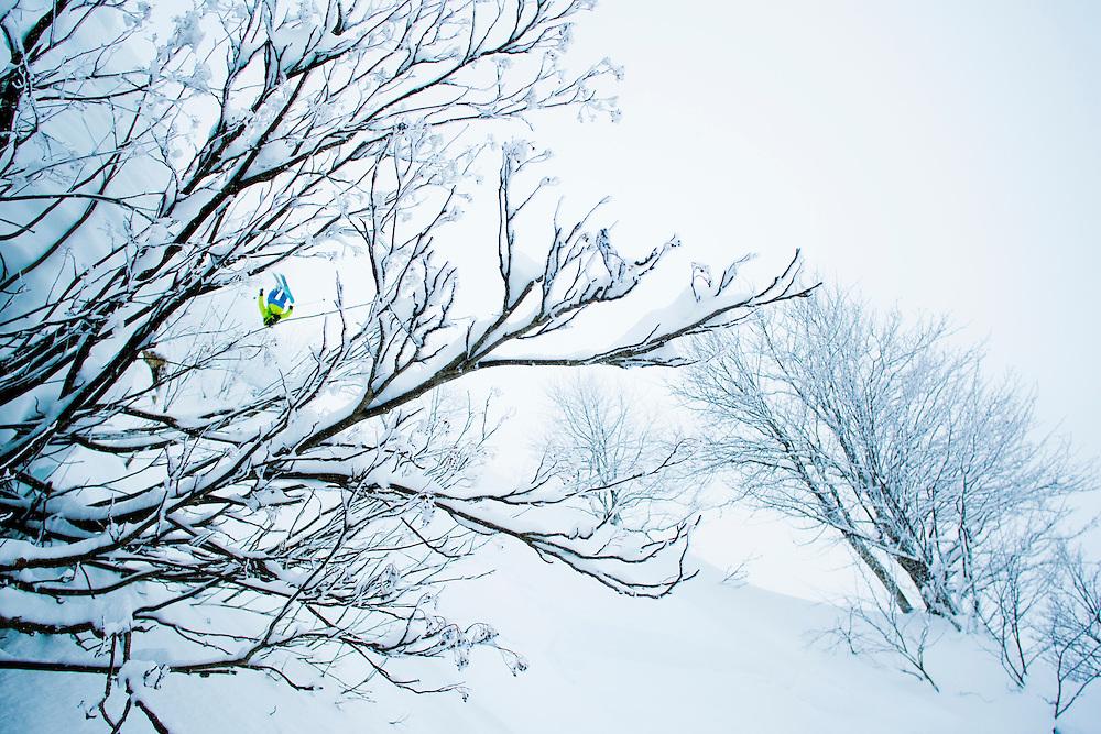RIDER: Adriens Coirier Location:Krasnaya-Polyana near Sochi (Russia)