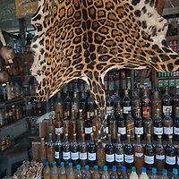An Anaconda skin (which is for sale) decorates a shop selling potions in an outdoor market in upper Belem, a crowded neighborhood in Iquitos, Peru.