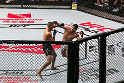 October 28, 2017 - Sao Paulo, Sao Paulo, Brazil - Oct, 2017 - Sao Paulo, Sao Paulo, Brazil - Fight between VICENTE LUQUE (The Silent Assassin) and NIKO PRICE (The Hybrid) during UFC Fight Night, at the Ibirapuera Gymnasium in Sao Paulo, this Saturday (28) (Credit Image: © Marcelo Chello via ZUMA Wire)