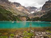 Low-angle view of beautiful, remote Lake O'Hara, with Seven Veils Falls in the trees, in Yoho National Park, near Field, British Columbia, Canada