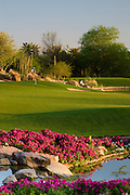 The 7th hole on the Canyon Golf Course at the Phoenician Resort in Scottsdale, Arizona.