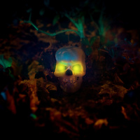 haunted skull with glowing eyes