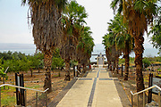 the wharf of Capernaum, Sea of Galilee, Israel