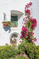 closed window and open birdcage in Santa Catalina monastery in the peruvian Andes at Arequipa Peru