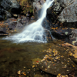 Fallen leaves and Gibbs Falls in the White Mountain N.F. Waterfalls.  Gibbs Brook Scenic Area.Crawford Notch. Crawford Path.  Appalachian Trail. Fall. Beans Grant, NH