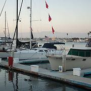 Boats in Marina. Channel Islands Marina. Ventura, CA.