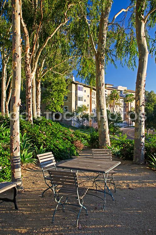 Residence Hall Soka University Aliso Viejo Campus