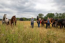 Snepvangers Christ, Snepvangers Miranda, Snepvangers Kristy, Hengsten, ruinen<br /> Millstream Stables - Bergen op Zoom 2021<br /> © Hippo Foto - Dirk Caremans<br /> 23/06/2021