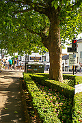 Henley on Thames, England, United Kingdom, 28th June 2019, Henley Royal Regatta Qualifiers, time trial, on Henley Reach, [© Peter SPURRIER/Intersport Image]<br /> <br /> 16:40:29