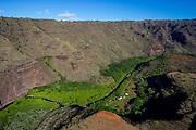 Farm, Waimea Canyon, Kauai, Hawaii