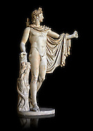 2nd century AD Roman statue of Apollo known as the Belvederre Apollo. The Apollo statue originally had a bow in its left hand and Apollo is depiceted having just fired an arrow.  Probably a Roman copy of a Hellenistic statue from around 330-320 BC by Leochares. Inv 1015, Vatican Museum Rome, Italy,  black background ..<br /> <br /> If you prefer to buy from our ALAMY STOCK LIBRARY page at https://www.alamy.com/portfolio/paul-williams-funkystock/greco-roman-sculptures.html . Type -    Vatican    - into LOWER SEARCH WITHIN GALLERY box - Refine search by adding a subject, place, background colour, museum etc.<br /> <br /> Visit our CLASSICAL WORLD HISTORIC SITES PHOTO COLLECTIONS for more photos to download or buy as wall art prints https://funkystock.photoshelter.com/gallery-collection/The-Romans-Art-Artefacts-Antiquities-Historic-Sites-Pictures-Images/C0000r2uLJJo9_s0c
