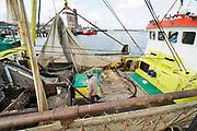 Nederland, Breskens, 5-9-2019 In de haven van deze kustplaats in Zeeuws Vlaanderen liggen vissersschepen. Eentje heeft zojuist op garlanen gevist en de bemanning gaat die verder wassen en verwerken voordat ze naar de afslag, veiling, gaan .Foto: Flip Franssen