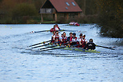 Crew: 155   Op 8+ BAND-1   Oxford Brookes University Boat Club   OXB-PEPERMANS-2<br /> <br /> Wallingford Head 2017<br /> <br /> To purchase this photo, or to see pricing information for Prints and Downloads, click the blue 'Add to Cart' button at the top-right of the page.