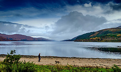 A man walks his dog on the beach at Corran Highlands of Scotland<br /> <br /> (c) Andrew Wilson | Edinburgh Elite media