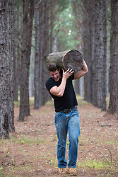 rugged man carrying a large tree stump through the woods