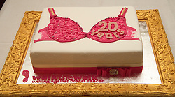 Detail of a cake cut by the Prince of Wales as he hosted a reception to celebrate the 20th anniversary of the Walk the Walk charity and to meet ambassadors and supporters at Clarence House, London.