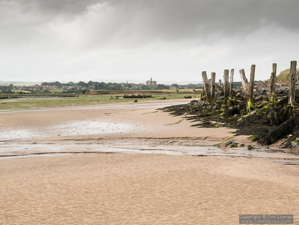The Derelict North Jetty At Amble, Northumberland At Low Tide. Warworth Castle Can Be Seen In The Distance.