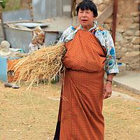 Asia, Bhutan, Paro. A Bhutanese woman tends her farm in Paro Valley.