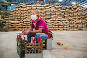 "15 NOVEMBER 2012 - PATHUM THANI, PATHUM THANI, THAILAND:  A worker keeps track of government purchased rice brought into a rice warehouse in Pathum Thani. The Thai government under Prime Minister Yingluck Shinawatra has launched an expansive price support ""scheme"" for rice farmers. The government is buying rice from farmers and warehousing it until world rice prices increase. Rice farmers, the backbone of rural Thailand, like the plan, but exporters do not because they are afraid Thailand is losing its position as the world's #1 rice exporter to Vietnam, which has significantly improved the quality and quantity of its rice. India is also exporting more and more of its rice. The stockpiling of rice is also leading to a shortage of suitable warehouse space. The Prime Minister and her government face a censure debate and possible no confidence vote later this month that could end the scheme or bring down the government.   PHOTO BY JACK KURTZ"