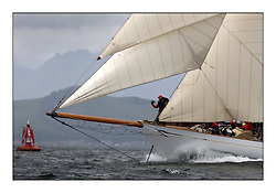 Altair 1931 Schooner..The final day's racing on the King's Course North of Cumbrae...* The Fife Yachts are one of the world's most prestigious group of Classic .yachts and this will be the third private regatta following the success of the 98, .and 03 events.  .A pilgrimage to their birthplace of these historic yachts, the 'Stradivarius' of .sail, from Scotland's pre-eminent yacht designer and builder, William Fife III, .on the Clyde 20th -27th June.   . ..More information is available on the website: www.fiferegatta.com . .Press office contact: 01475 689100         Lynda Melvin or Paul Jeffes