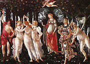 Primavera (Spring), Sandro Botticelli, 1477. Botticelli chooses to tell the story of spring as the season of romantic attraction. On the right is the first cameo: the frightened nymph Chloris is pursued by Zephyr, god of winds (that blow in the new season of spring). Zephyr's blue/green colouring presumably represents the element air, but also the chill of winter and so connects the current scene to the one which came before. Zephyr is overcome by attraction to Chloris' beauty. Beside Chloris is the goddess Flora, whom Chloris is soon to be transformed into, according to Ovid; Flora is pregnant and scatters flower petals as symbols of fecundity.