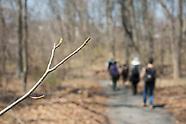 High Line & BBG Van Cortland Park Spring Ephemeral Field Trip