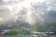63821-23706 Sun rays in fog in flower garden, Marion Co., IL