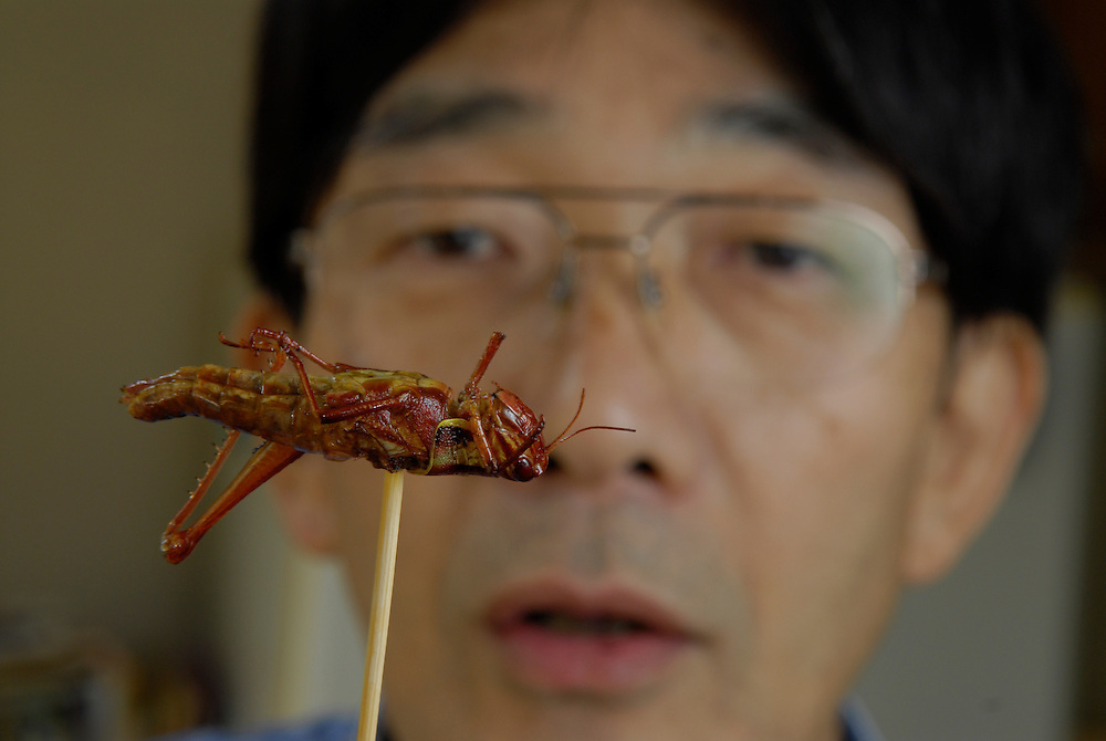 """Shoichi Uchiyama about to eat a locust. Tokyo resident Shoichi Uchiyama is the author of """"Fun Insect Cooking"""". His blog on the topic gets 400 hits a day. He believes insects could one day be the solution to food shortages, and that rearing bugs at home could dispel food safety worries."""
