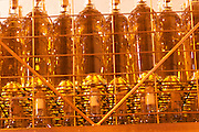 bottles of white wine in a wire cage Bodega Del Anelo Winery, also called Finca Roja, Anelo Region, Neuquen, Patagonia, Argentina, South America