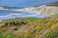 Coastal path at Compton Bay on the Isle of Wight
