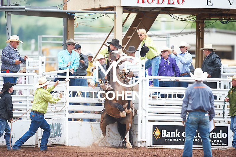 Saddle bronc rider Nick LaDuke of Livermore, CA rides Spring Creek at the Pikes Peak or Bust Rodeo in Colorado Springs, CO.<br /> <br /> <br /> UNEDITED LOW-RES PREVIEW<br /> <br /> <br /> File shown may be an unedited low resolution version used as a proof only. All prints are 100% guaranteed for quality. Sizes 8x10+ come with a version for personal social media. I am currently not selling downloads for commercial/brand use.