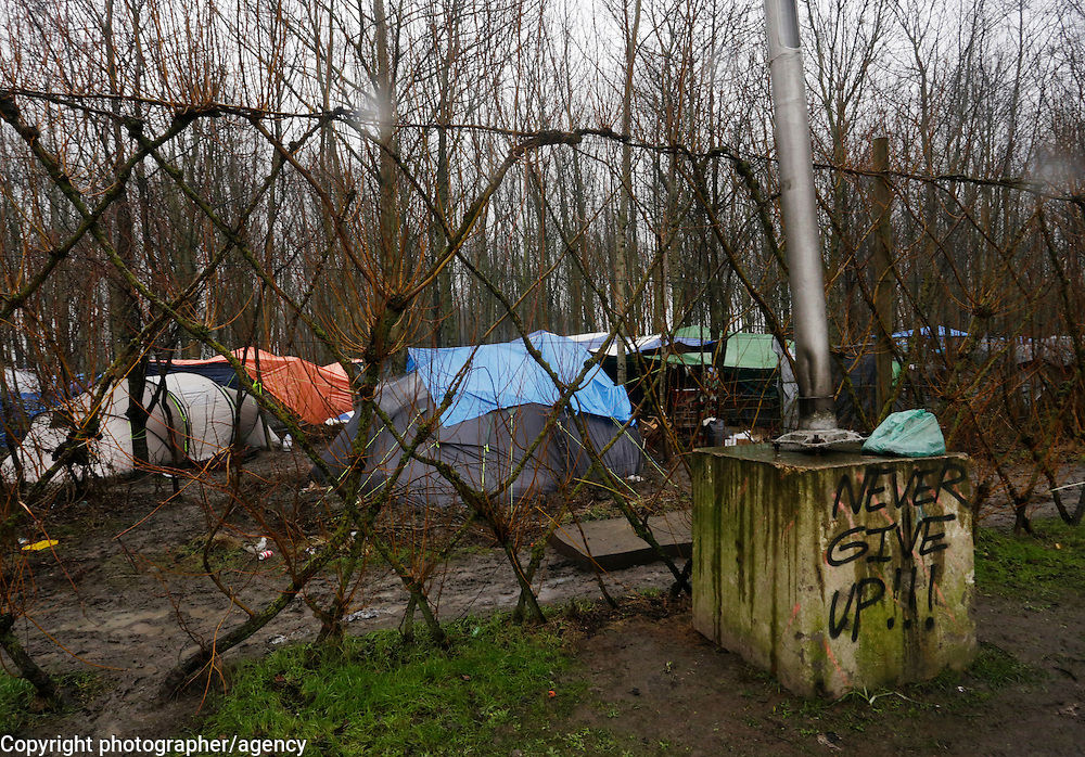 Flimsy tents are all that some 2500 refugees have to shelter from the rain and freezing conditions 22 January 2016, at the Grande-Synthe refugee camp, near Dunkirk in northern France.
