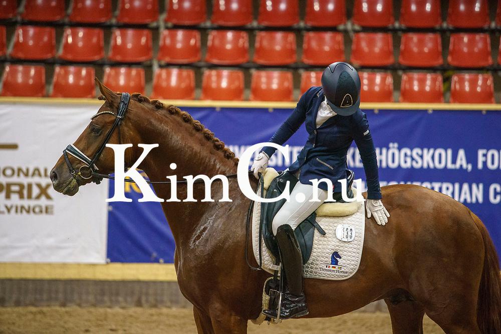 Morricello VH (SWB) hingst 2017 e Morricone u Floricella VH (31) (SWB) e Floricello Jessica Lynn Thomas åld 36 uppf Västra Hoby Stuteri AB äg Västra Hoby Stuteri AB- Hennix Horses AB