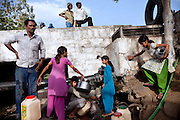 Local families are busy collecting supposedly safe drinking water from broken public water pipes around the abandoned Union Carbide (now DOW Chemical) industrial complex in Bhopal, Madhya Pradesh, India.