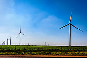 Rural farm area with wind power in the fields. Light fog and blue skies over green fields.