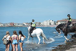 Mounted Police take their horses into the water to help them cool down during today's extremely hot weather. Troon Beach, Troon, Friday 26 May 2017 Angie Isac | EEm