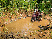 """22 APRIL 2014 - WANG NUA, LAMPANG, THAILAND: An artisanal gold miner digs a new mine on the banks of Mae Wang. Villagers in the Wang Nua district of Lampang province found gold in the Mae Wang (Wang River) in 2011 after excavation crews dug out sand for a construction project. A subsequent Thai government survey of the river showed """"a fair amount of gold ore,"""" but not enough gold to justify commercial mining. Now every year when the river level drops farmers from the district come to the river to pan for gold. Some have been able to add to their family income by 2,000 to 3,000 Baht (about $65 to $100 US) every month. The gold miners work the river bed starting in mid-February and finish up  by mid-May depending on the weather. They stop panning when the river level rises from the rains. This year the Thai government is predicting a serious drought which may allow miners to work longer into the summer.    PHOTO BY JACK KURTZ"""