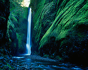 Oneonta Falls deep within Oneonta Gorge, Columbia River Gorge National Scenic Area, Mount Hood National Forest, Oregon.